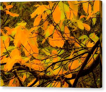 Ore Leaves Canvas Print by Kristen R Kennedy