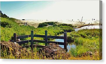 Oregon Beach 1 Canvas Print by Larry Campbell