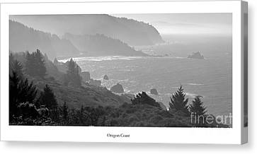 Oregon Coast In Black And White Canvas Print