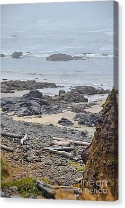 Oregon Rocks Canvas Print by Shauna Fackler