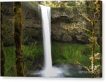 Oregon Waterfall Woodland Canvas Print by Andrea Hazel Ihlefeld