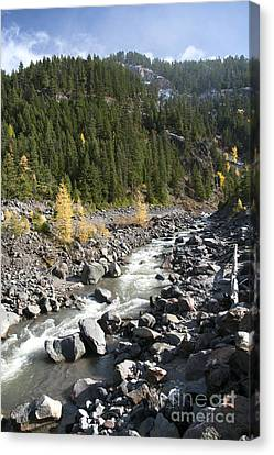 Oregon Wilderness II Canvas Print by Peter French