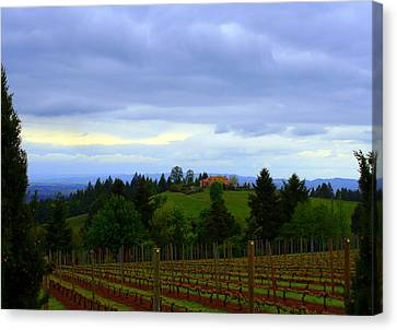 Canvas Print featuring the photograph Oregon Wine Country by Debra Kaye McKrill