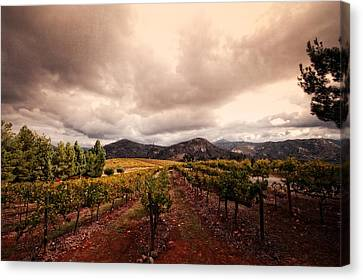 Canvas Print featuring the photograph Orfila by Ryan Weddle