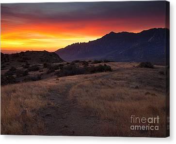 Organ Mountain Dawn Canvas Print by Mike  Dawson