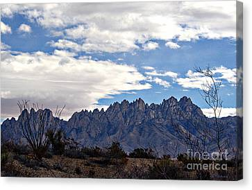 Organ Mountain Landscape Canvas Print