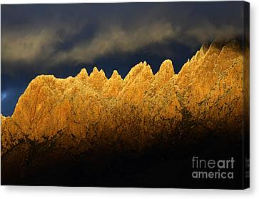 Organ Mountains Magical Light Canvas Print by Bob Christopher