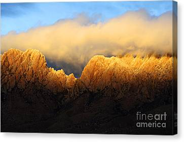 Organ Mountains Symphony Of Light Canvas Print by Bob Christopher