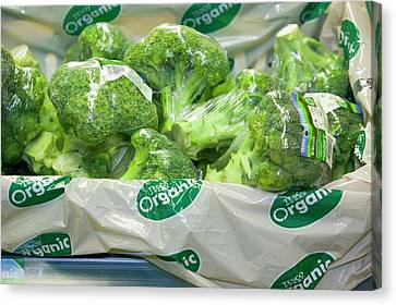 Organic Broccoli For Sale Canvas Print by Ashley Cooper