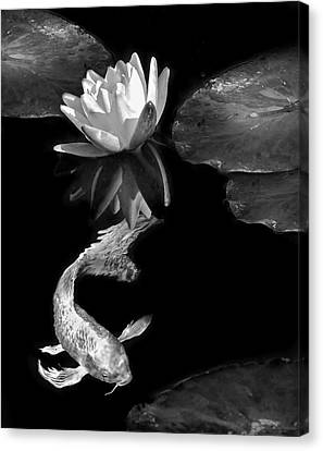 Oriental Koi Fish And Water Lily Flower Black And White Canvas Print by Jennie Marie Schell