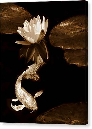 Oriental Koi Fish And Water Lily Flower Sepia Canvas Print by Jennie Marie Schell