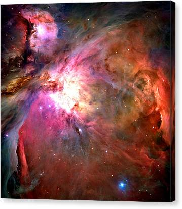 Orion Nebula Close Up 1-2-14 Canvas Print by L Brown