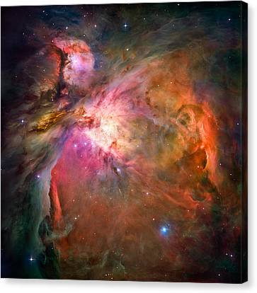 Orion Nebula Canvas Print by Marco Oliveira