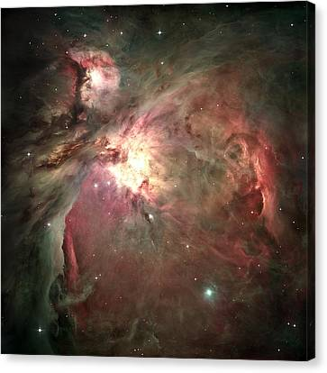 The Hatchery Canvas Print - Space Hollywood - Orion Nebula by Marianna Mills