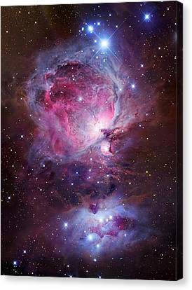 Orion Sword Canvas Print by Celestial Images