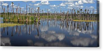 Orlando Wetlands Cloudscape 5 Canvas Print by Mike Reid