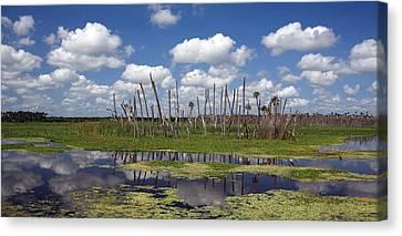 Orlando Wetlands Cloudscape Canvas Print by Mike Reid