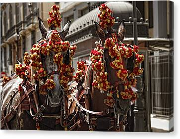 Ornamented Horses Canvas Print by Goyo Ambrosio