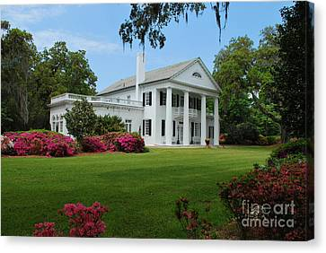 Canvas Print featuring the photograph Orton Plantation by Bob Sample