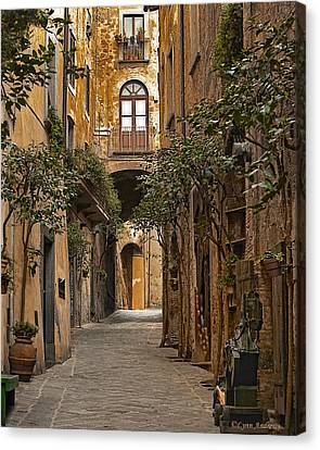 Orvieto Side Street Canvas Print by Lynn Andrews