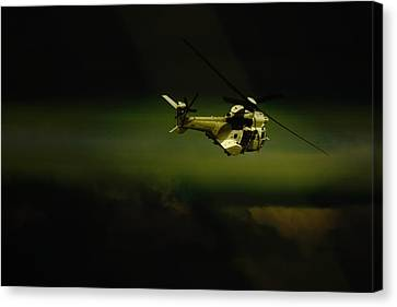 Canvas Print featuring the photograph Oryx by Paul Job