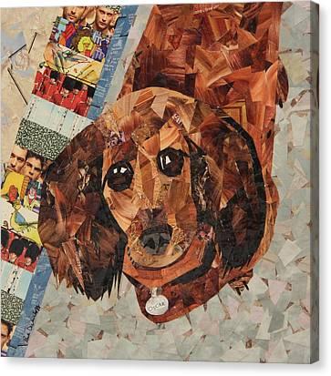 Oscar Canvas Print by Paula Dickerhoff