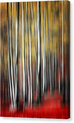 Canvas Print featuring the photograph Osmosis by Philippe Sainte-Laudy