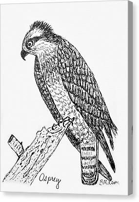 Osprey Canvas Print - Osprey by Becky Mason
