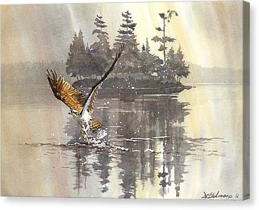 Osprey Hunting No.2 Canvas Print by David Gilmore