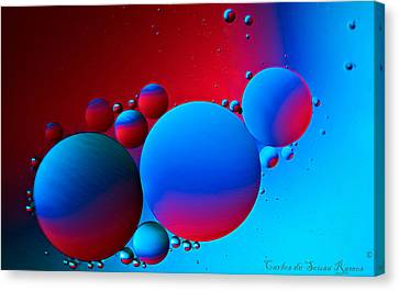 Other Small Worlds Canvas Print by Carlos Ramos