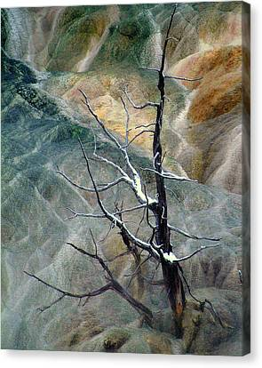 Other Worlds.. Canvas Print by Al  Swasey