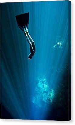 Apnea Canvas Print - Into The Blue by One ocean One breath