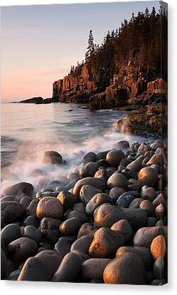 Otter Cliffs Canvas Print