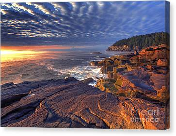 Otter Cove Sunrise Canvas Print by Marco Crupi