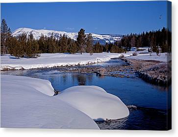 Canvas Print featuring the photograph Otter Creek by Jack Bell