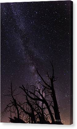Our Galaxy Canvas Print by Bill Cantey