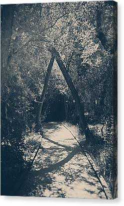 Our Paths Will Cross Again Canvas Print by Laurie Search