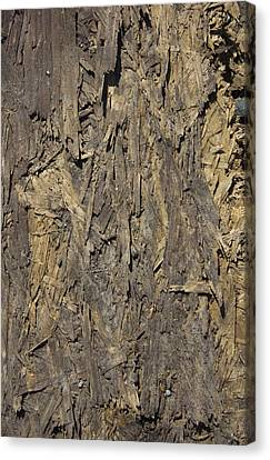 Out Door Ply Wood Tatter Floor  Canvas Print by Sirron Kyles