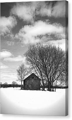 Out In The Sticks Canvas Print by Thomas Young