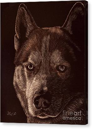Out Of The Darkness Portrait Of A Husky Canvas Print