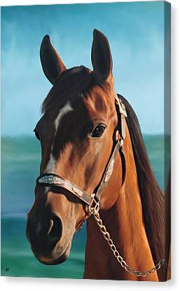 Out Of The Sea Comes The Arabian Canvas Print by Barbara St Jean