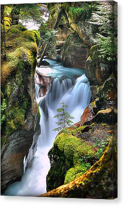 West Glacier Canvas Print - Out On A Ledge by Ryan Smith