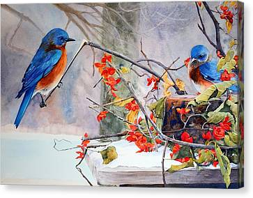 Out On A Limb Canvas Print by Brenda Beck Fisher