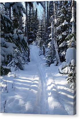 Canvas Print featuring the photograph Out On The Trail by Sandra Updyke