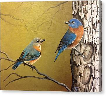 Bluebird Canvas Print - Out To Lunch by Laura Parrish