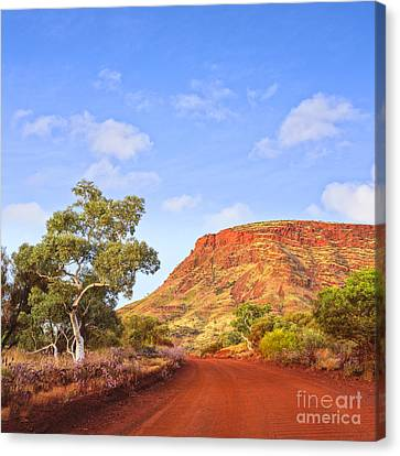 Outback Mount Nameless Western Australia Canvas Print by Colin and Linda McKie