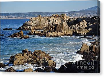 Canvas Print featuring the photograph Outcroppings At Monterey Bay by Susan Wiedmann
