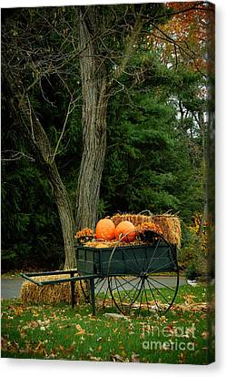Outdoor Fall Halloween Decorations Canvas Print by Amy Cicconi