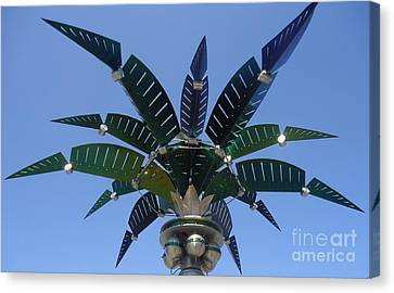 Outer Space Palm Canvas Print by Ann Johndro-Collins