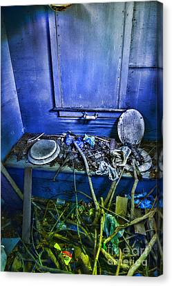 Outhouse Abandoned In The Woods Canvas Print by Paul Ward